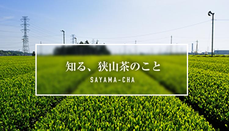 banner_sayamacha